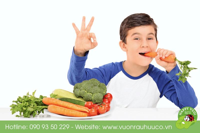 Happy Vegi - Rau hữu cơ, rau organic, rau sạch