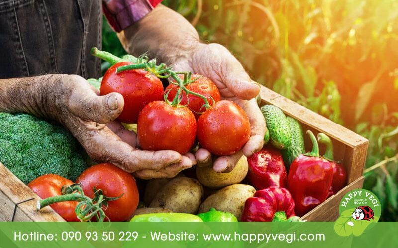 rau-organic-rau-an-toan-co-phai-1-loai-happyvegi